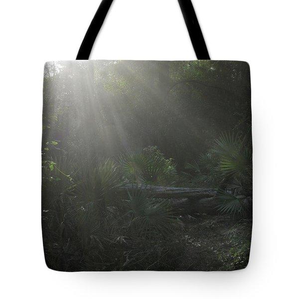 Enchanted Glen Tote Bag