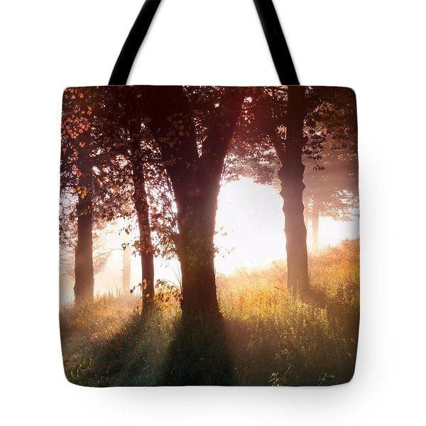 Enchanted Meadow Tote Bag by Debra and Dave Vanderlaan
