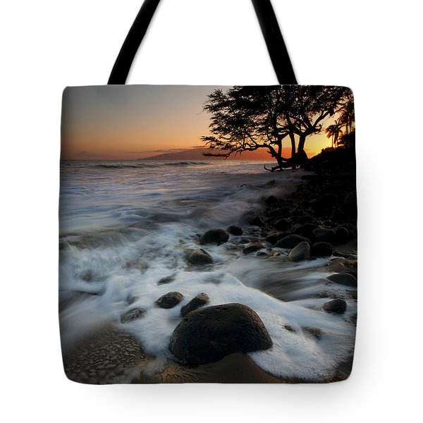 Encompassed Tote Bag by Mike  Dawson