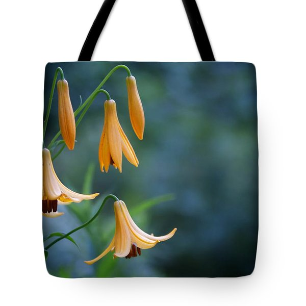 End Of June Two Tote Bag by Nathan Larson