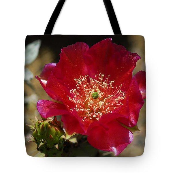 Englemann's Prickly Pear Cactus  Tote Bag by Saija  Lehtonen