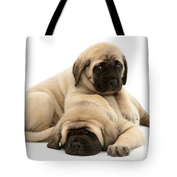 English Mastiff Puppies Tote Bag by Jane Burton