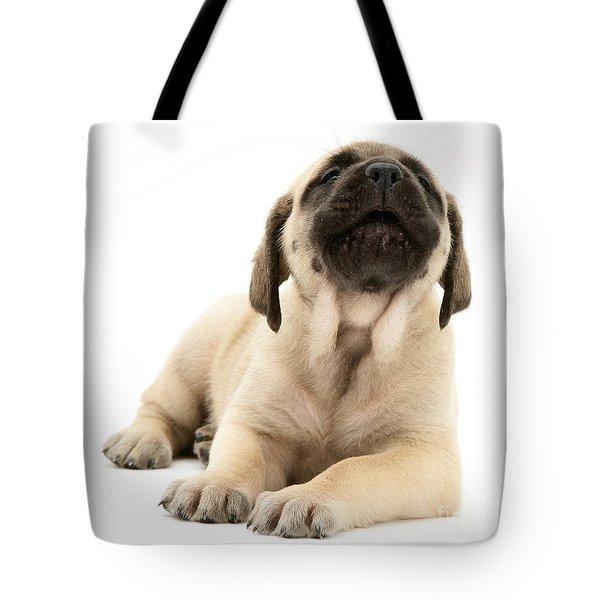 English Mastiff Puppy Tote Bag by Jane Burton