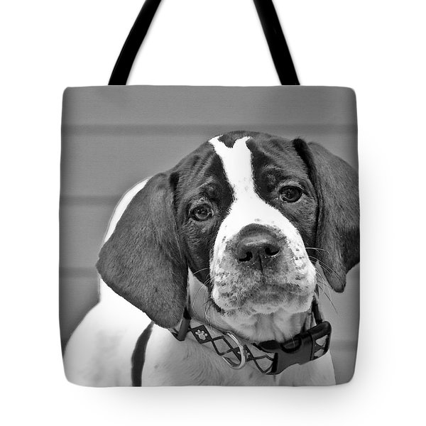 Tote Bag featuring the photograph English Pointer Puppy Black And White by Susan Leggett