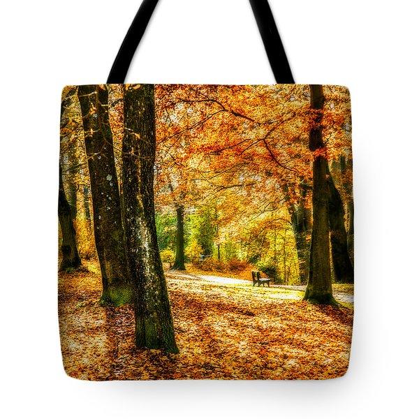 enjoy the autmn II Tote Bag by Hannes Cmarits