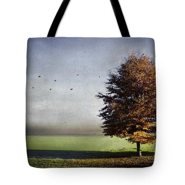 Enjoying The Autumn Sun Tote Bag by Hannes Cmarits