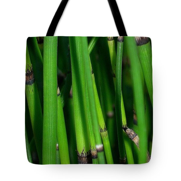 Tote Bag featuring the photograph Equisetum by Judi Bagwell