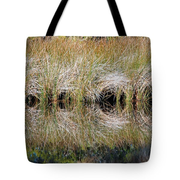 Escape Hatches Tote Bag by Kay Lovingood