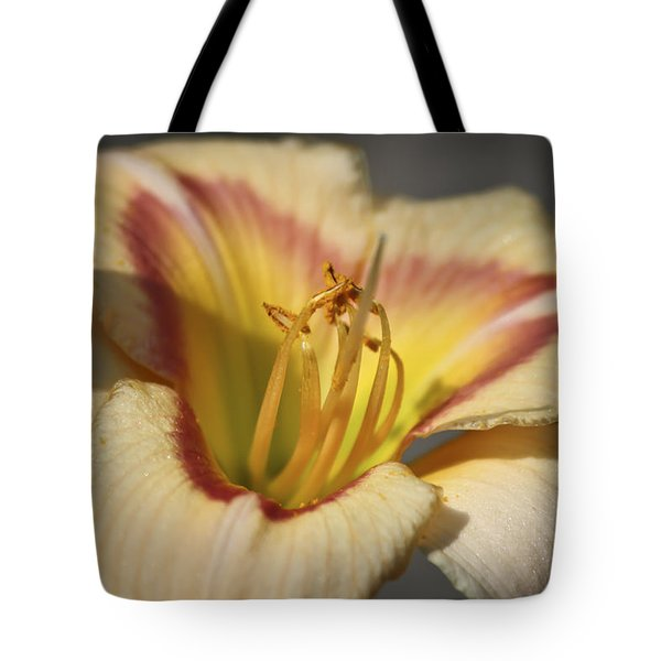 Ethel Brown Daylily 3 Tote Bag by Teresa Mucha