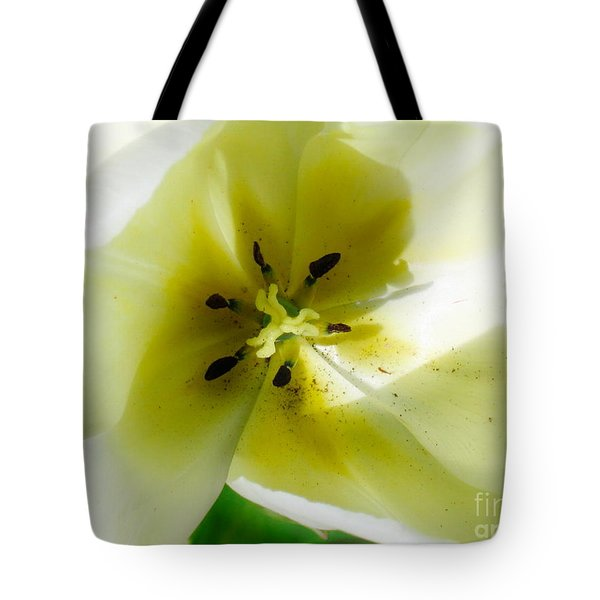 Ethereal Tote Bag by Rory Sagner