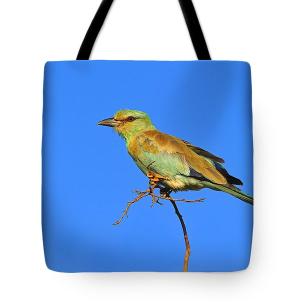 Eurasian Roller Tote Bag by Tony Beck
