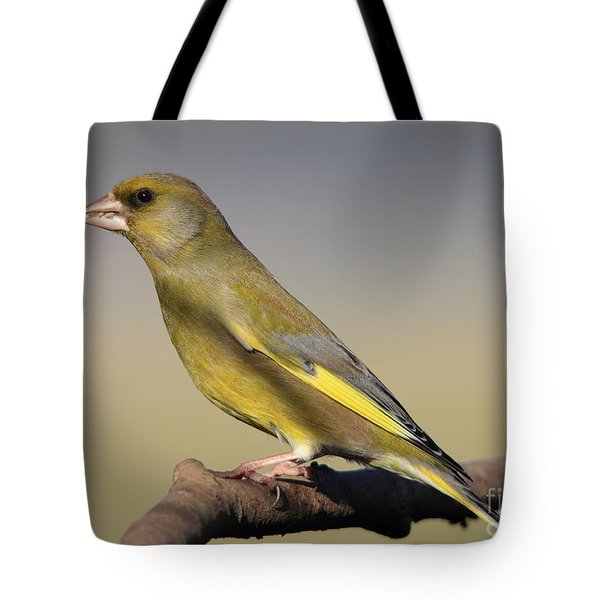European Greenfinch Tote Bag