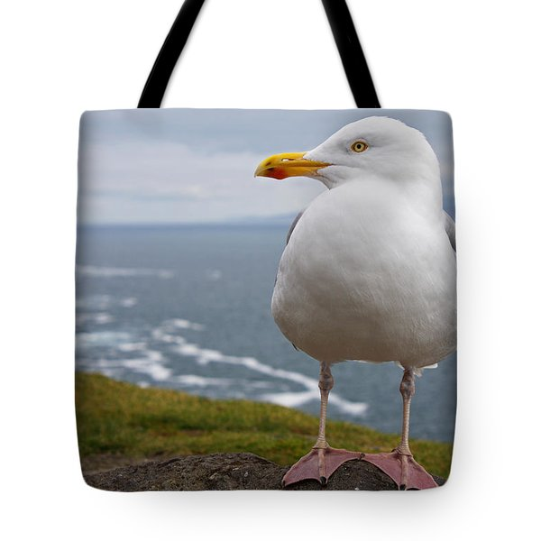 European Herring Gull Larus Argentatus Tote Bag by Trish Punch