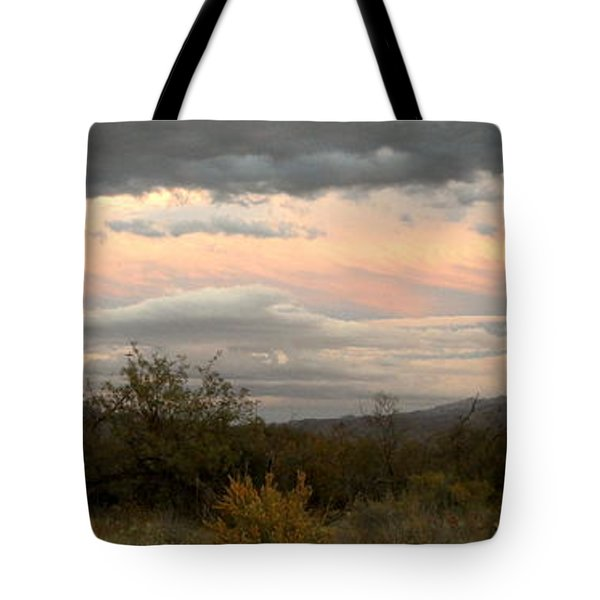 Tote Bag featuring the photograph Evening In Tucson by Kume Bryant