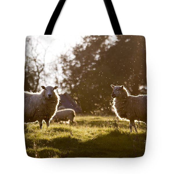 Evening On The Meadow Tote Bag by Angel  Tarantella