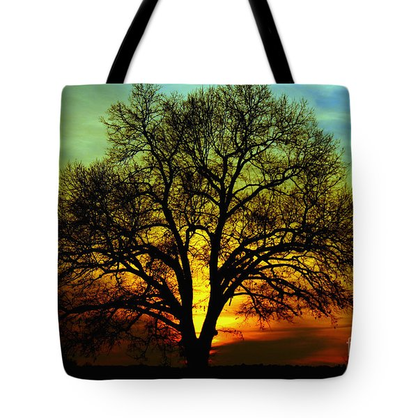 Evening Palette Tote Bag