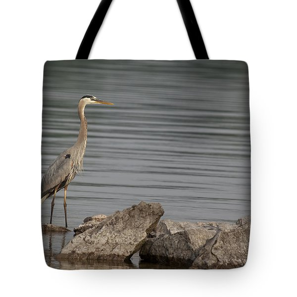 Ever Alert Tote Bag by Eunice Gibb