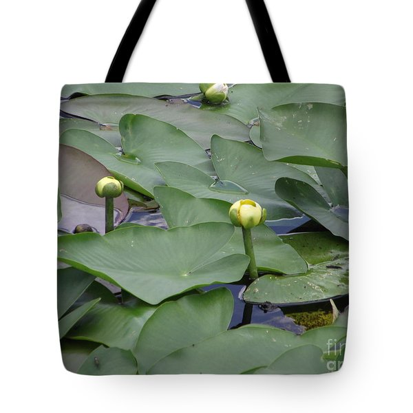 Everglade Beauty Tote Bag