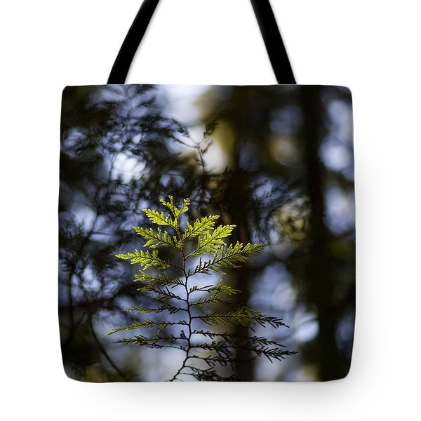 Evergreen Light Tote Bag by Mike Reid