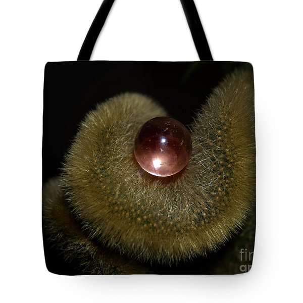 Eye Of The Cacti Tote Bag by Irma BACKELANT GALLERIES