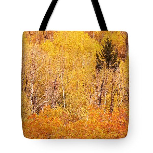 Eyeful Of Color Tote Bag by Bob and Nancy Kendrick