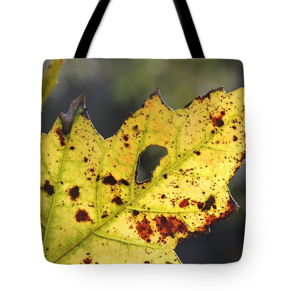 Face Of A Leaf Tote Bag