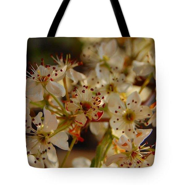 Faded Blossom Tote Bag