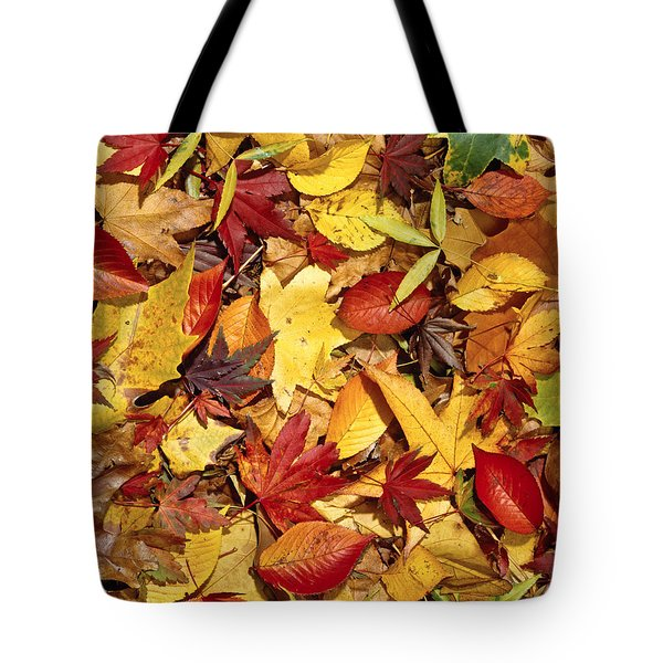 Fall  Autumn Leaves Tote Bag by Bruce Stanfield