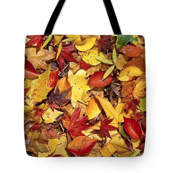 Fall  Autumn Leaves Tote Bag