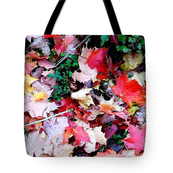 Tote Bag featuring the photograph Fall Beauty by Joan Hartenstein