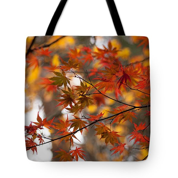 Fall Color Montage Tote Bag by Mike Reid