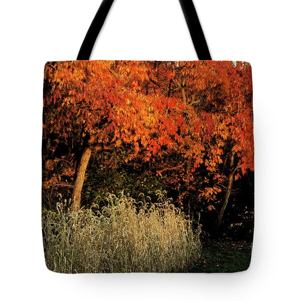 Tote Bag featuring the photograph Fall Colors 2 by Vilas Malankar
