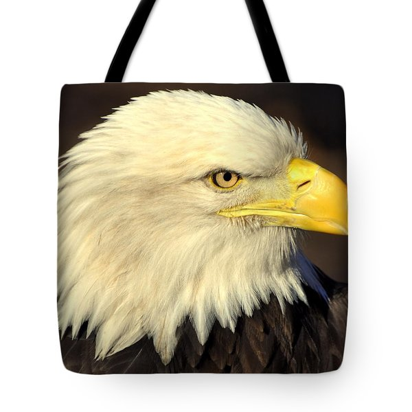 Fall Eagle 1 Tote Bag by Marty Koch