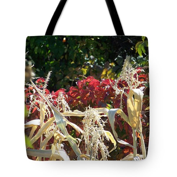 Fall Harvest Of Color Tote Bag by Dorrene BrownButterfield
