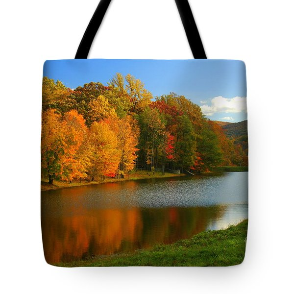 Fall In New York State Tote Bag