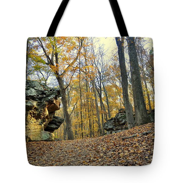 Fall In The Forest 3 Tote Bag by Marty Koch