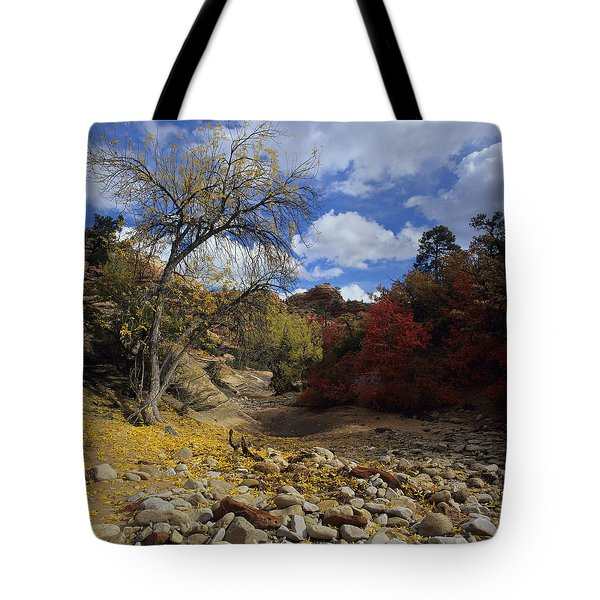 Fall In Zion High Country Tote Bag