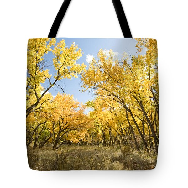 Fall Leaves In New Mexico Tote Bag