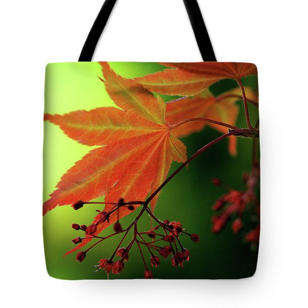 Tote Bag featuring the photograph Fall Leaves by Michelle Joseph-Long