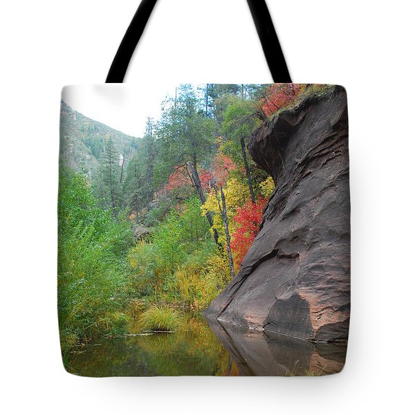Fall Peeks From Behind The Rocks Tote Bag by Heather Kirk