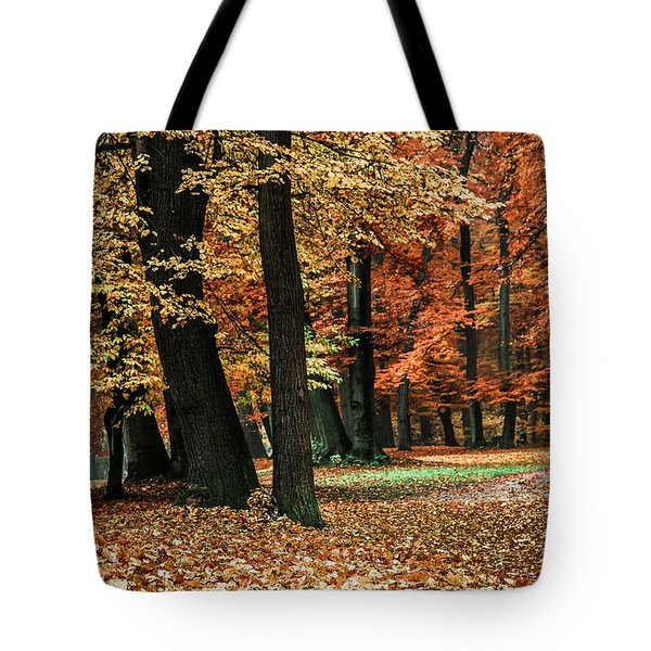 Fall Scenery Tote Bag by Hannes Cmarits