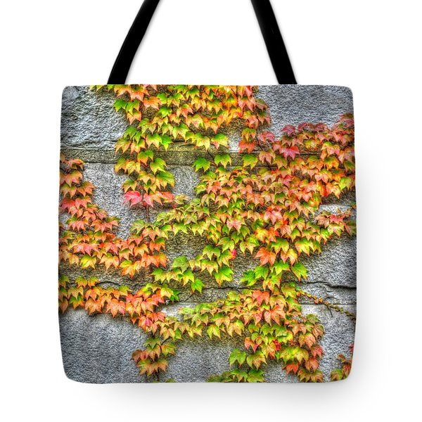Tote Bag featuring the photograph Fall Wall by Michael Frank Jr