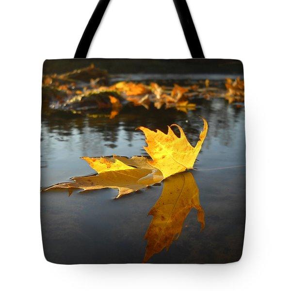 Fallen Maple Leaf Reflection Tote Bag
