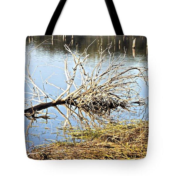 Fallen Tree Tote Bag by Douglas Barnard