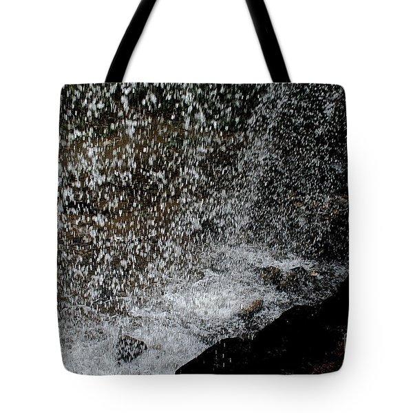 Fall's Backside Tote Bag by Susan Herber