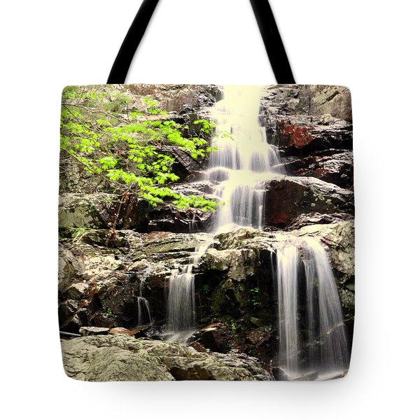 Falls Tote Bag by Marty Koch