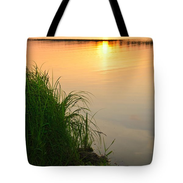 Farewell To The June Day Tote Bag