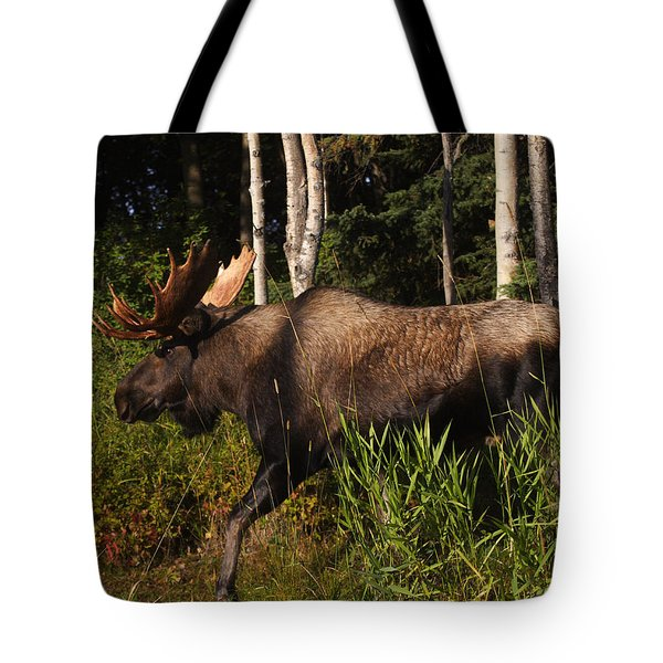 Tote Bag featuring the photograph Fast Mover by Doug Lloyd