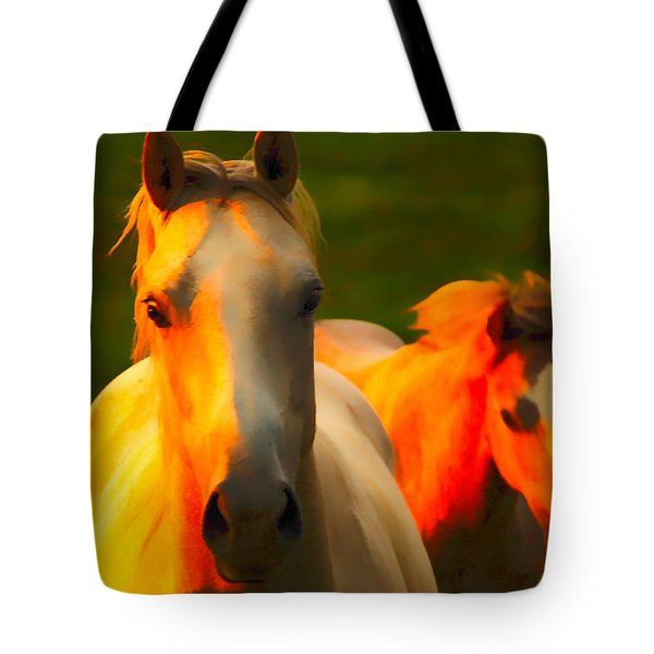 Father And Son Tote Bag by Randall Branham