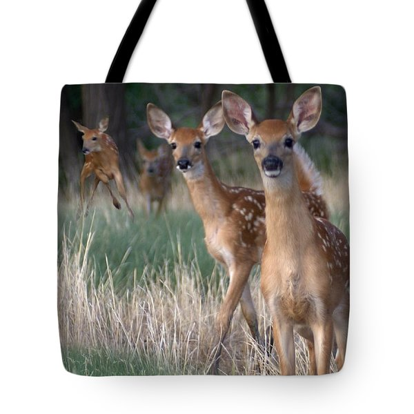 Fawns Fawns Tote Bag by Bill Stephens